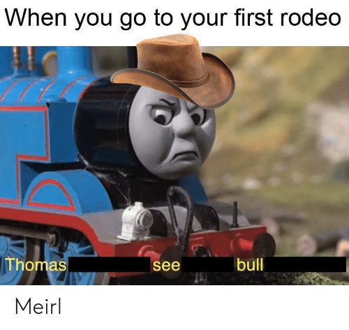 Rodeo, MeIRL, and Thomas: When you go to your first rodeo  Thomas  bull  see Meirl