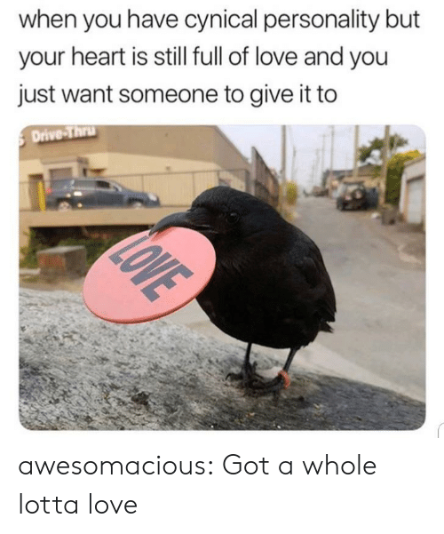 Love, Tumblr, and Blog: when you have cynical personality but  your heart is still full of love and you  just want someone to give it to  Drive-Thru  LOVE awesomacious:  Got a whole lotta love