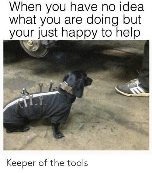 Happy, Help, and Idea: When you have no idea  what you are doing but  your just happy to help Keeper of the tools