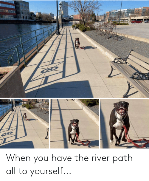 river: When you have the river path all to yourself...