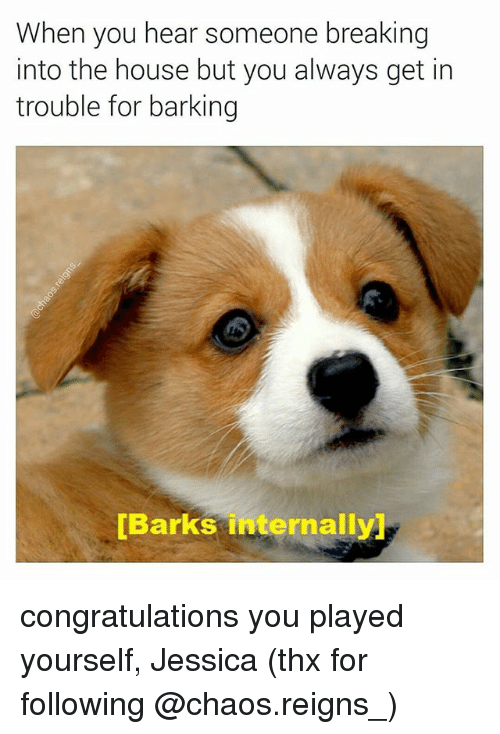 Congratulations You Played Yourself, Memes, and Congratulations: When you hear someone breaking  into the house but you always get in  trouble for barking  [Barks internally) congratulations you played yourself, Jessica (thx for following @chaos.reigns_)