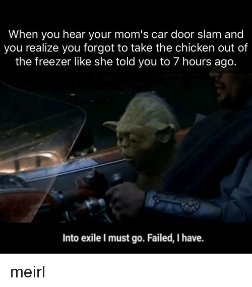 door slam: When you hear your mom's car door slam and  you realize you forgot to take the chicken out of  the freezer like she told you to 7 hours ago.  Into exile I must go. Failed, I have. meirl