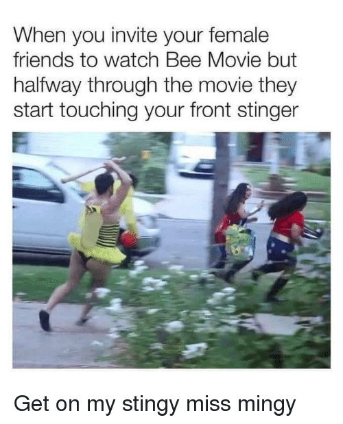 Bee Movie: When you invite your female  friends to watch Bee Movie but  halfway through the movie they  start touching your front stinger Get on my stingy miss mingy