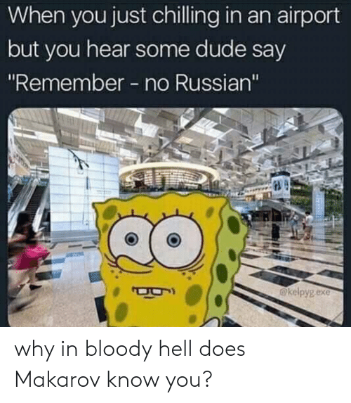 """Dude, Reddit, and Russian: When you just chilling in an airport  but you hear some dude say  """"Remember - no Russian""""  kelpyg.exe why in bloody hell does Makarov know you?"""