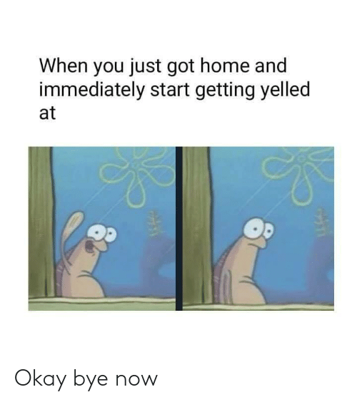 Dank, Home, and Okay: When you just got home and  immediately start getting yelled  at Okay bye now