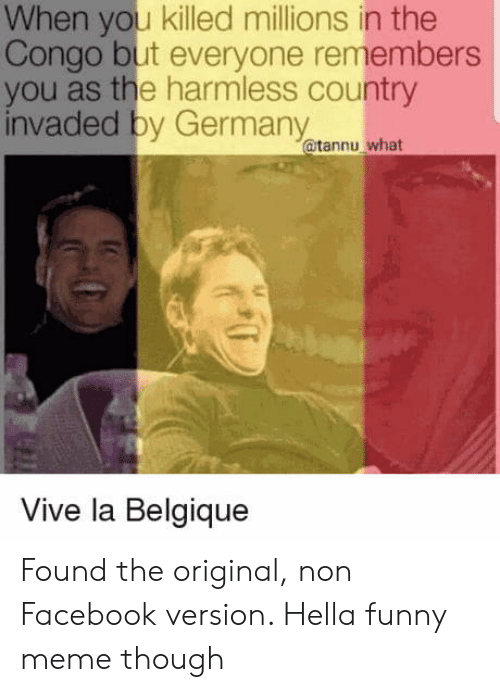 Hella Funny: When you killed millions in the  Congo but everyone remembers  you as the harmless country  invaded by Germany  @tannu what  Vive la Belgique Found the original, non Facebook version. Hella funny meme though