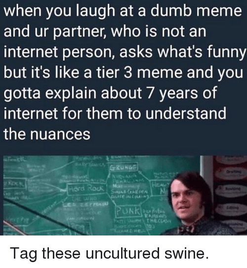 Uncultured Swine: when you laugh at a dumb meme  and ur partner, who is not an  internet person, asks what's funny  but it's like a tier 3 meme and you  gotta explain about 7 years of  internet for them to understand  the nuances  Hord Rock Tag these uncultured swine.