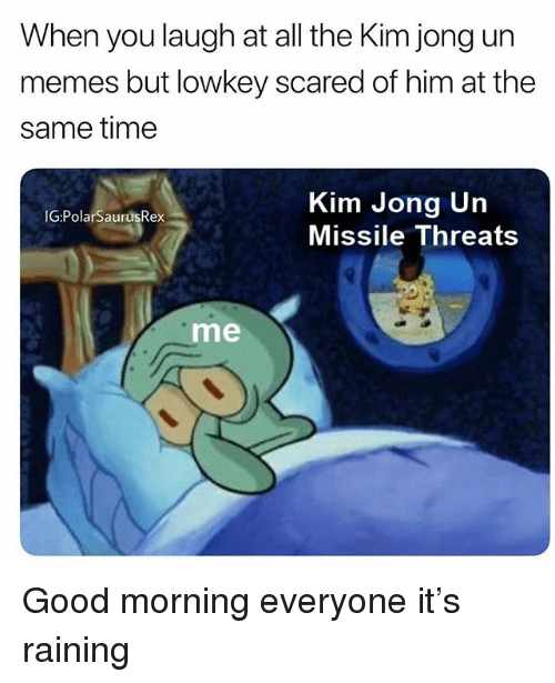 Kim Jong Un Memes: When you laugh at all the Kim jong un  memes but lowkey scared of him at the  same time  Kim Jong Un  Missile Threats  IG:PolarSaurüsRex  me Good morning everyone it's raining