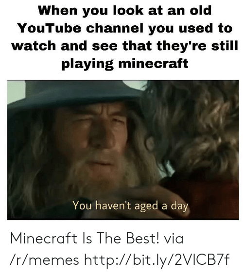 Memes, Minecraft, and youtube.com: When you look at an old  YouTube channel you used to  watch and see that they're still  playing minecraft  You haven't aged a day Minecraft Is The Best! via /r/memes http://bit.ly/2VICB7f