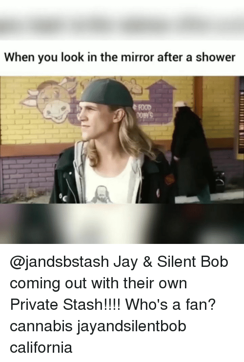 Food, Jay, and Memes: When you look in the mirror after a shower  FOOD @jandsbstash Jay & Silent Bob coming out with their own Private Stash!!!! Who's a fan? cannabis jayandsilentbob california