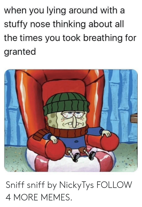 You Lying: when you lying around with a  stuffy nose thinking about all  the times you took breathing for  granted Sniff sniff by NickyTys FOLLOW 4 MORE MEMES.