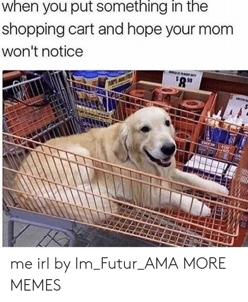 Dank, Memes, and Shopping: when you put something in the  shopping cart and hope your mom  won't notice  98 me irl by Im_Futur_AMA MORE MEMES