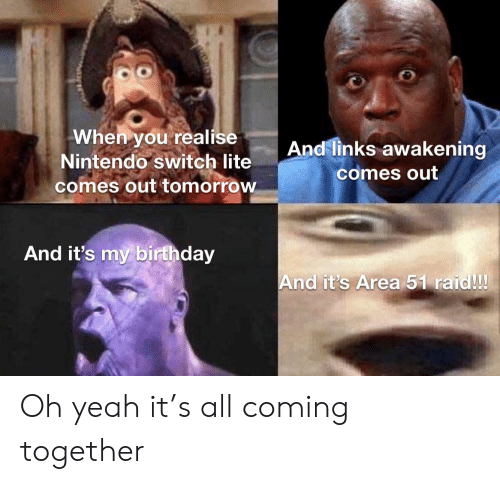 Birthday, Nintendo, and Yeah: When you realise  Nintendo switch lite  comes out tomorrow  And links awakening  comes out  And it's my birthday  And it's Area 51 raid!! Oh yeah it's all coming together