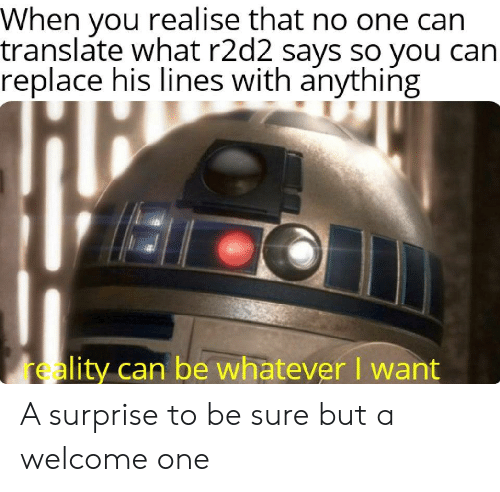 Translate, Reality, and Can: When you realise that no one can  translate what r2d2 says so you can  replace his lines with anything  reality can be whatever I want A surprise to be sure but a welcome one