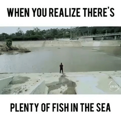 25 best memes about plenty of fish in the sea plenty of fish