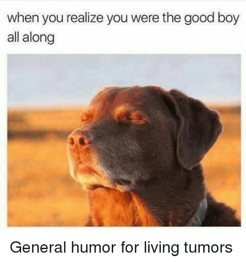 Dank, Good, and Generalization: when you realize you were the good boy  all along General humor for living tumors
