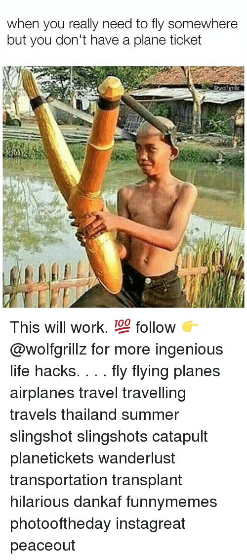 Thailande: when you really need to fly somewhere  but you don't have a plane ticket  wolf grillz This will work. 💯 follow 👉@wolfgrillz for more ingenious life hacks. . . . fly flying planes airplanes travel travelling travels thailand summer slingshot slingshots catapult planetickets wanderlust transportation transplant hilarious dankaf funnymemes photooftheday instagreat peaceout