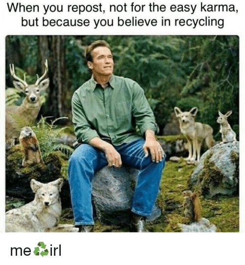 Karma, Easy, and Recycling: When you repost, not for the easy karma,  but because you believe in recycling me♻️irl