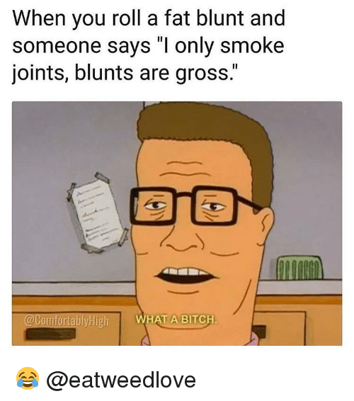 """joints: When you roll a fat blunt and  someone says """"I only smoke  joints, blunts are gross.""""  @ComfortablyHigh  WHAT A BITCH 😂 @eatweedlove"""