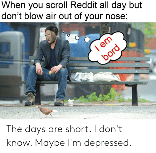 reddit all: When you scroll Reddit all day but  don't blow air out of your nose:  I em  bord The days are short. I don't know. Maybe I'm depressed.