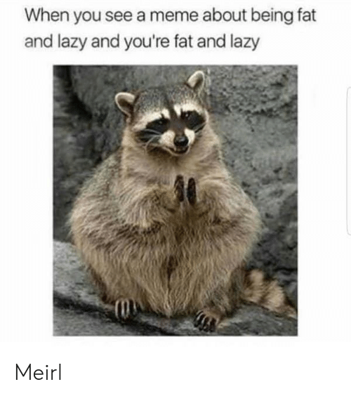 meme about: When you see a meme about being fat  and lazy and you're fat and lazy Meirl