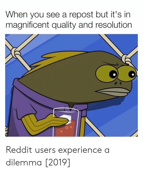 dilemma: When you see a repost but it's in  magnificent quality and resolution Reddit users experience a dilemma [2019]