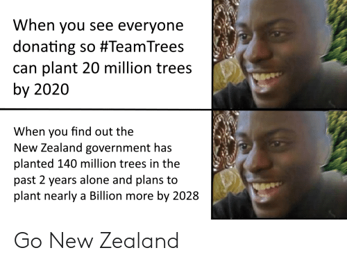 Donating: When you see everyone  donating so #TeamTrees  can plant 20 million trees  by 2020  When you find out the  New Zealand government has  planted 140 million trees in the  past 2 years alone and plans to  plant nearly a Billion more by 2028 Go New Zealand