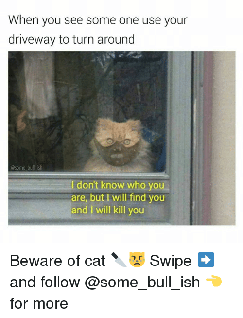 Memes, 🤖, and Cat: When you  see some one use your  driveway to turn around  bull is  Some  don't know who you  are, but I will find you  and I will kill you Beware of cat 🔪😾 Swipe ➡️ and follow @some_bull_ish 👈for more