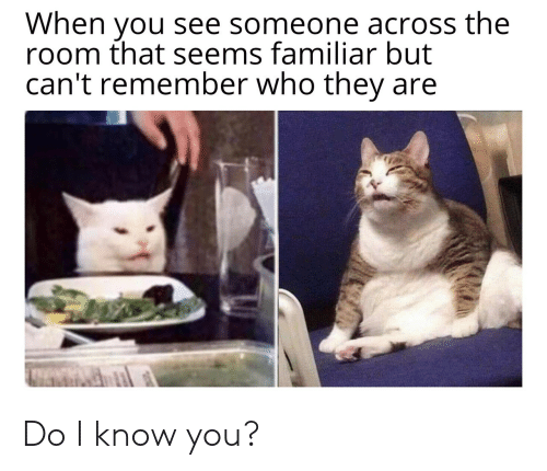Do I Know You: When you see someone across the  room that seems familiar but  can't remember who they Do I know you?