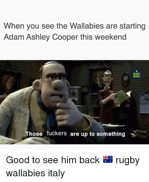 Memes, Good, and Rugby: When you see the Wallabies are starting  Adam Ashley Cooper this weekend  RUGBY  MEMES  Those fuckers are up to something Good to see him back 🇦🇺 rugby wallabies italy
