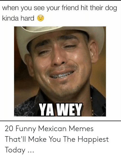 funny mexican memes: when you see your friend hit their dog  kinda hard  YAWEY 20 Funny Mexican Memes That'll Make You The Happiest Today ...