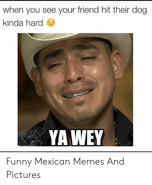 funny mexican memes: when you see your friend hit their dog  kinda hard  YA WEY Funny Mexican Memes And Pictures