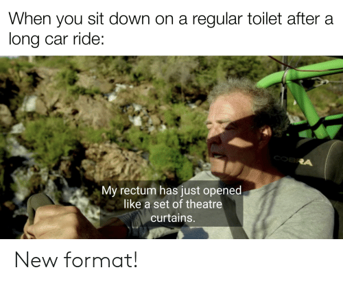 Curtains, Dank Memes, and Theatre: When you sit down on a regular toilet after a  long car ride:  COBRA  My rectum has just opened  like a set of theatre  curtains. New format!