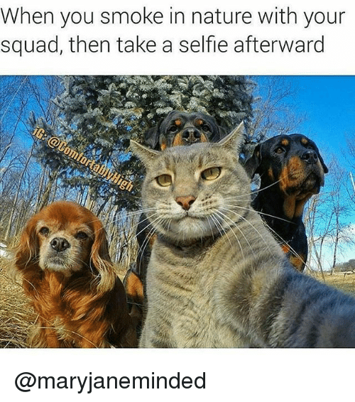 Memes, Selfie, and Squad: When you smoke in nature with your  squad, then take a selfie afterward @maryjaneminded