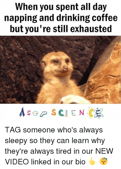 Drinking Coffee: When you spent all day  napping and drinking coffee  but you're still exhausted  Asep SCIENCE TAG someone who's always sleepy so they can learn why they're always tired in our NEW VIDEO linked in our bio 👆 😴