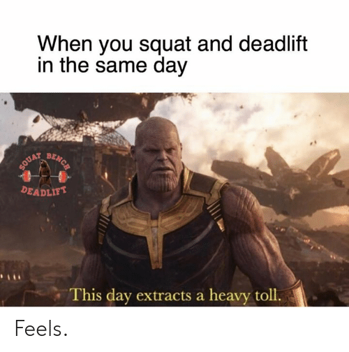 Squat, Day, and You: When you squat and deadlift  in the same day  BENCH  SOUAT  DEADLIFT  This day extracts a heavy toll. Feels.