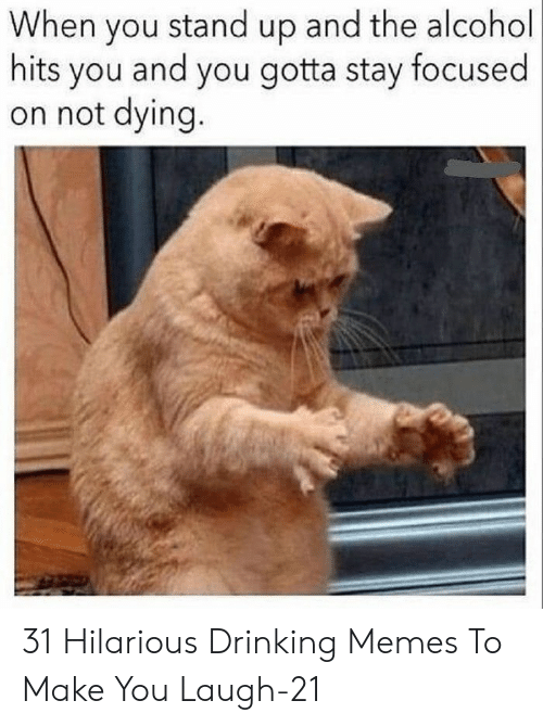 Drinking, Memes, and Alcohol: When you stand up and the alcohol  hits you and you gotta stay focused  on not dying. 31 Hilarious Drinking Memes To Make You Laugh-21