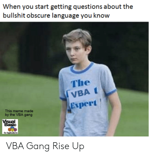 vba: When you start getting questions about the  bullshit obscure language you know  The  VBAt  Expert  This meme made  by the VBA gang  Visual  Basic  for Applictons VBA Gang Rise Up