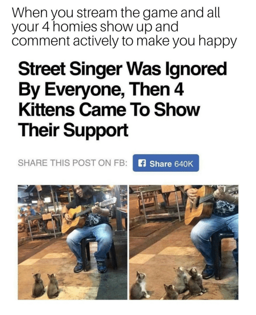 Make You Happy: When you stream the game and all  your 4 homies show up and  comment actively to make you happy  Street Singer Was Ignored  By Everyone, Then 4  Kittens Came To Show  Their Support  SHARE THIS POST ON FB:  fShare 640K