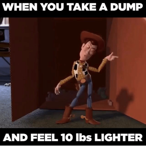 Take A Dump: WHEN YOU TAKE A DUMP  AND FEEL 10 lbs LIGHTER