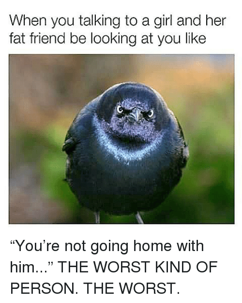 """Fat Friend: When you talking to a girl and her  fat friend be looking at you like """"You're not going home with him..."""" THE WORST KIND OF PERSON. THE WORST."""