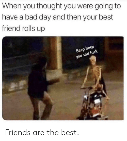 Bad, Bad Day, and Best Friend: When you thought you were going to  have a bad day and then your best  friend rolls up  Вееp beep  you sad fuck Friends are the best.