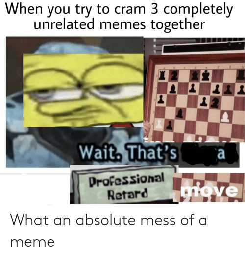 retard: When you try to cram 3 completely  unrelated memes together  Wait. That's a  Professional  Retard  ve What an absolute mess of a meme