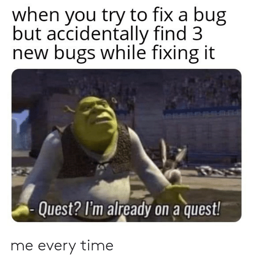 Quest: when you try to fix a bug  but accidentally find 3  new bugs while fixing it  Quest? I'm already on a quest! me every time