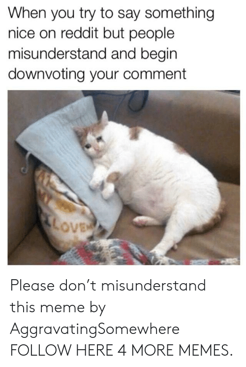 Dank, Meme, and Memes: When you try to say something  nice on reddit but people  misunderstand and begin  downvoting your comment  ove Please don't misunderstand this meme by AggravatingSomewhere FOLLOW HERE 4 MORE MEMES.