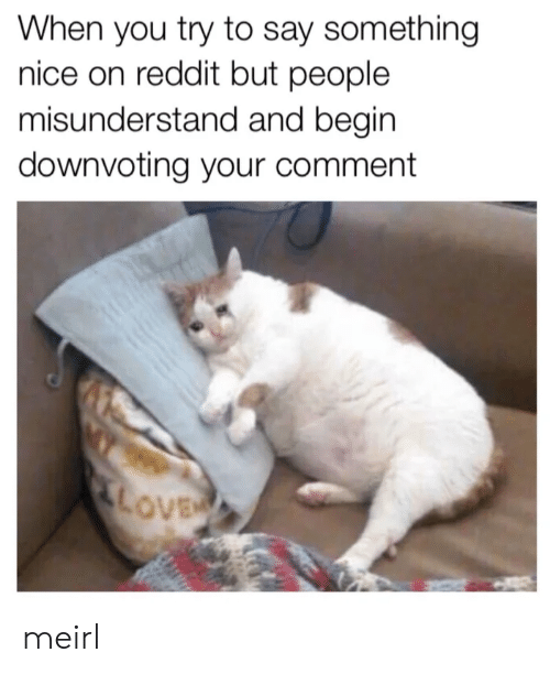 When You Try to Say Something Nice on Reddit but People