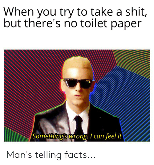 Facts, Shit, and Paper: When you try to take a shit,  but there's no toilet paper  Something's wrong I can feel it Man's telling facts...