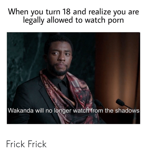 Wakanda: When you turn 18 and realize you  legally allowed to watch porn  Wakanda will no longer watch from the shadows Frick Frick