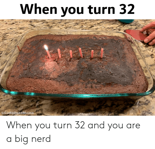 And You Are: When you turn 32  @CodeDoesMeme When you turn 32 and you are a big nerd