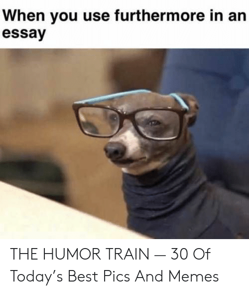 Memes, Best, and Today: When you use furthermore in an  essay THE HUMOR TRAIN — 30 Of Today's Best Pics And Memes